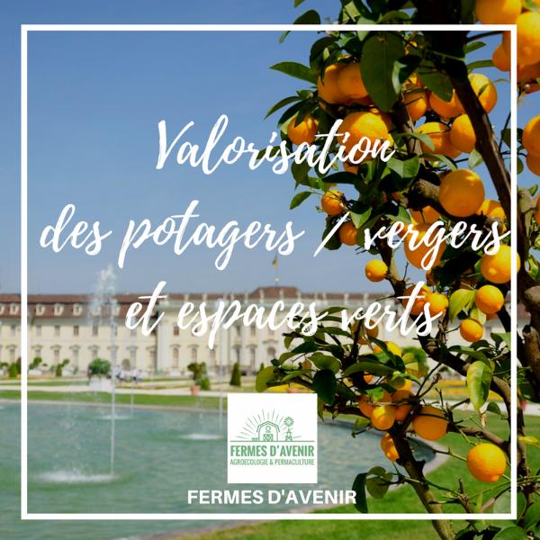 Valorisation des potagers / vergers et espaces verts