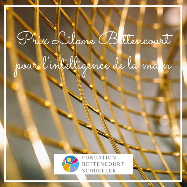Prix Liliane Bettencourt pour l'intelligence de la main