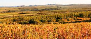 Faire rayonner le patrimoine avec l'agritourisme